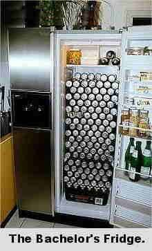 the bachelor's fridge