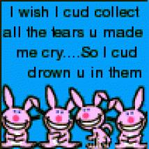i wish i could collect all the tears you made me cry so i could drown you in them