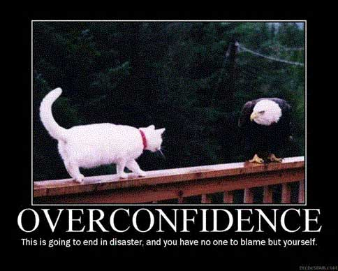 cat attacks eagle overconfidence
