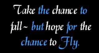 take the chance to fall but hope for the chance to fly