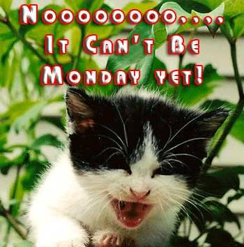 it cant be monday yet