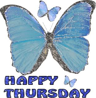 happy thursday butterflies