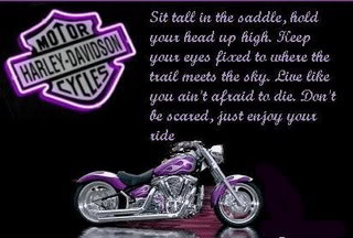 sit tall in the saddle harley davidson