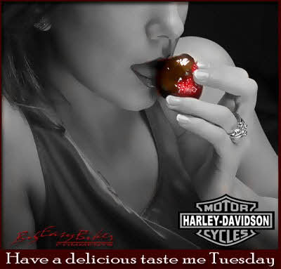 have a delicious taste me tuesday