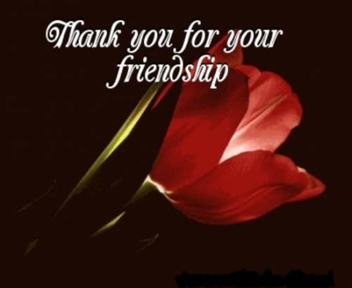 Thank you for your friendship
