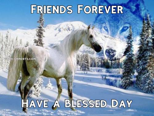Friends Forever Have a Blessed Day