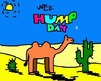 wednesday hump day camel