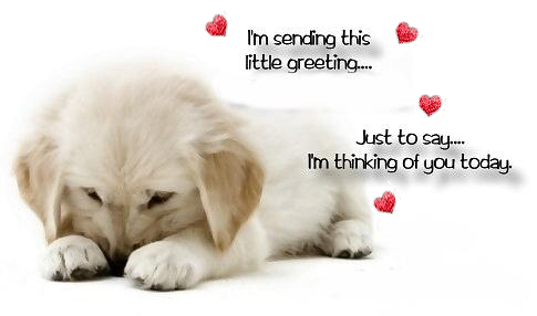 im sending this little greeting just to say im thinking of you today