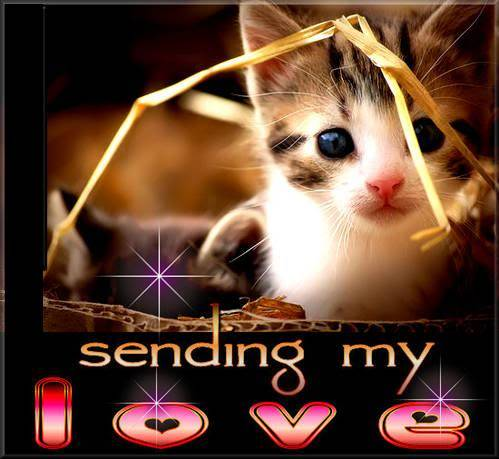 Sending my love