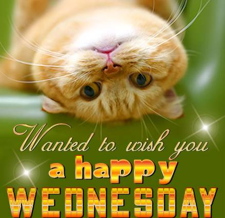 wanted to wish you a happy wednesday