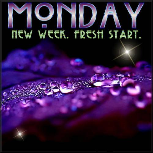 Monday  New Week. Fresh Start
