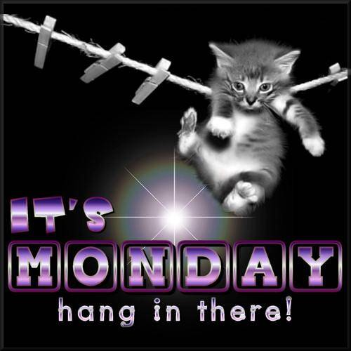 Its Monday hang in there!