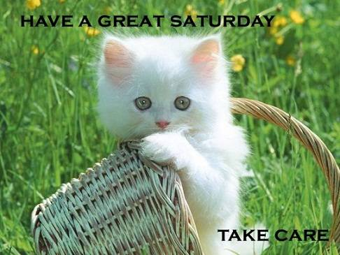 Have A  Great  Saturday