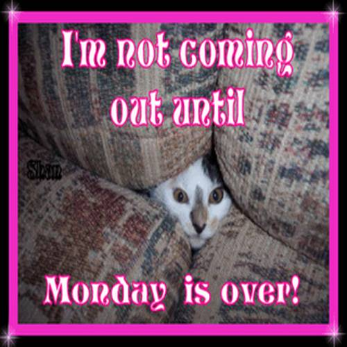 Im not coming out until Monday is over!