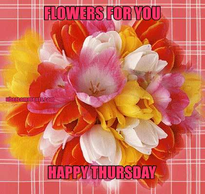 flowers for you happy thursday thursday graphics for