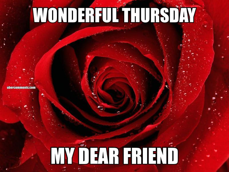 WONDERFUL THURSDAY MY DEAR FRIEND - Thursday graphics for
