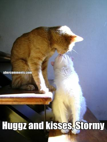Huggz and kisses, Stormy