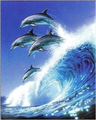Dolphins jumping with wave