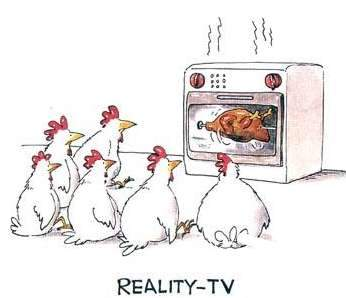 chickens watching reality tv