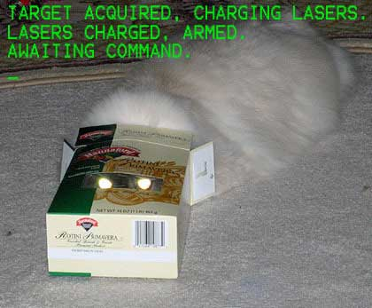 target acquired charing lasers charged armed waiting command