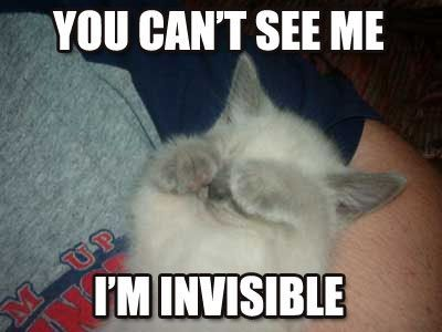 you can't see me i'm invisible