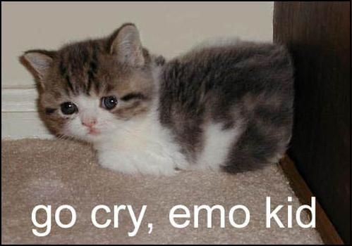 go cry emo kid