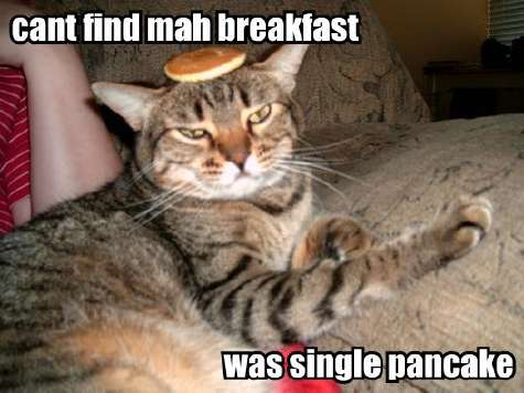 can't find my breakfast was single pancake