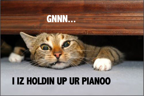 i am holding up your piano