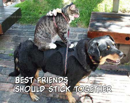 best friends should stick together