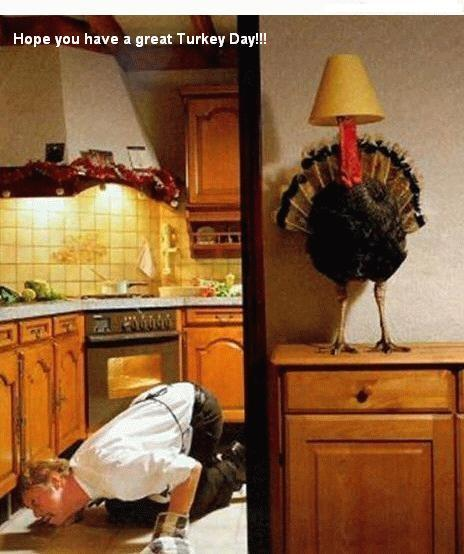 hope you have a great turkey day