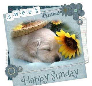 sweet dreams happy sunday