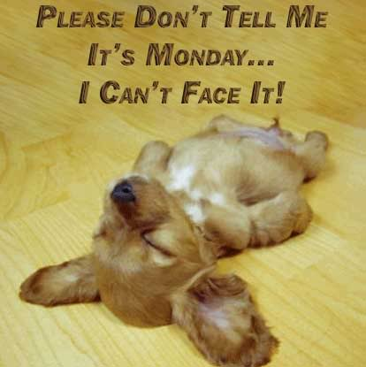 please dont tell me its monday i cant face it