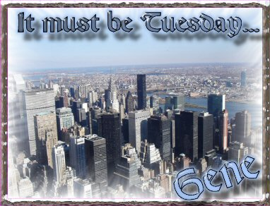 it must by tuesday new york city