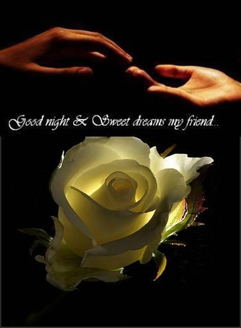 Good night and Sweet dreams my friend...