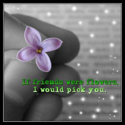 If friends were flowers I would pick you