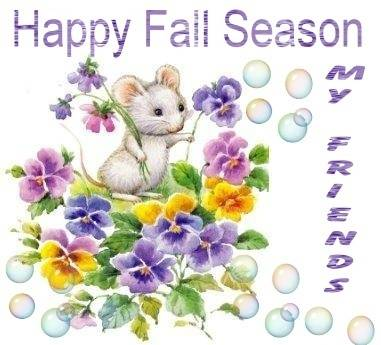 Happy fall season my friends