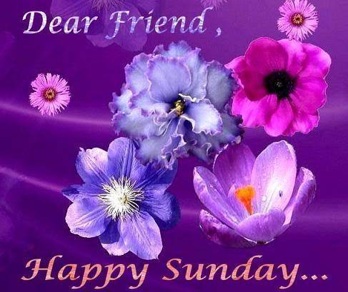 Dear Friend, Happy Sunday