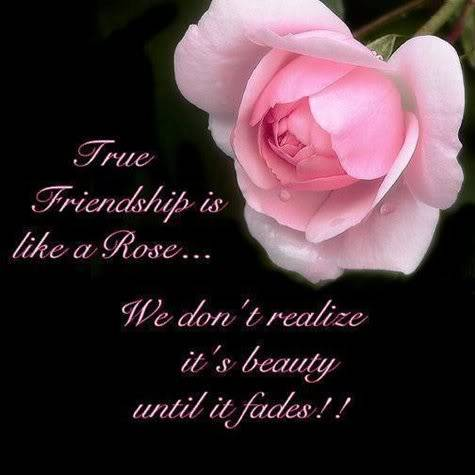 True friendship is like a Rose...