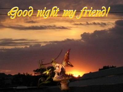 Good Night My Friend