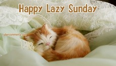 Happy Lazy Sunday