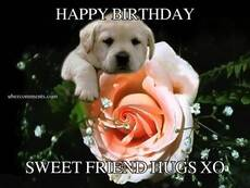HAPPY BIRTHDAY SWEET FRIEND HUGS XO