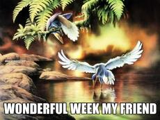 WONDERFUL WEEK MY FRIEND