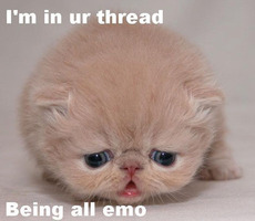 i'm in ur thread being all emo cat