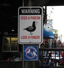 warning feed a pigeon lose a finger sign