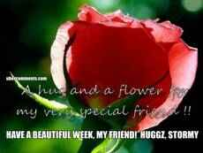 HAVE A BEAUTIFUL WEEK, MY FRIEND!  HUGGZ, STORMY