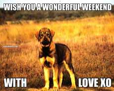 WISH YOU A WONDERFUL WEEKEND WITH                          LOVE XO