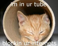 im in your tube blocking your internet