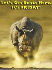 let's get outta here it's friday rhino