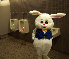 easter bunny hides eggs in toilet
