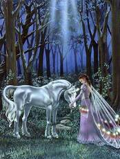 fairy unicorn